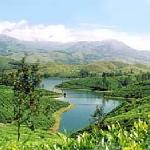 a cool view of munnar