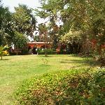 garden view, looking towards outdoor restaurant