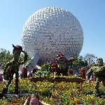 Flower and garden festival creations