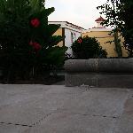Jardin et bungalows Villa Blances 1