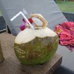 Coco Mango Drink Poolside