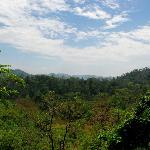 Foto de Brahmaputra Jungle Resort