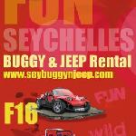 BUGGY & JEEP 2011