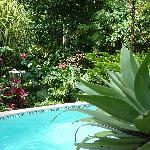 Magellan Inn pool
