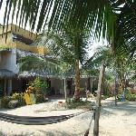 Photo of Coconut Hotel
