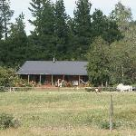 View of the house from the pastures