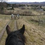 Through the ears view from horseback