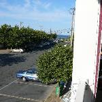 View of Wilmington Ave & Ocean from Mariachi balcony