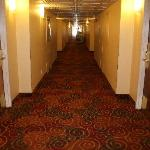 Newly carpeted hallway