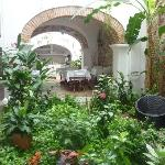 Jardin interior_Hotel Alfiz