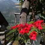 Photo de Antico Torchio