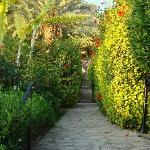 Photo de Hotel Bellapais Gardens