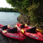 Our Kayaks are waiting for you !!