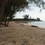 Johnstone Beach