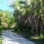 The park has miles of nature trails some with oceanview and others to just take in the sounds of