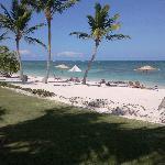 La plage, nettoyée chaque jour sur 2km...
