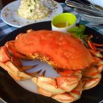 Fresh Crab from our Tank -Pick your Lobster or Crab!