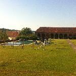 Schloss Seggau Pool