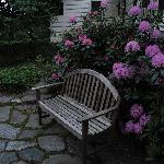 Garden bench at the inn