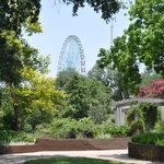Texas Ferris wheel from Discovery Garden