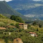 Photo of Agriturismo Terre Bianche