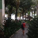 Wege im Resort