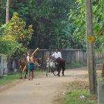 The street outside the homestay