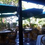 Outdoor dining w/humming birds