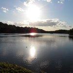 Bracebridge Lake