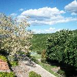 One of the views from our room, the blooming tree smelled so sweet. Great views all around!