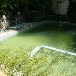 la piscine face à la salle du petit déjeûner...