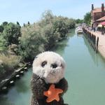 The canal and pathway on Torcello