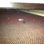 abajo de mi cama