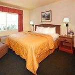 Guestroom with Kind Bed plus work area great for business travel