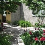 B&B's garden