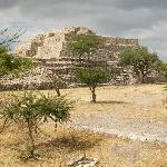 A View of the Ruins