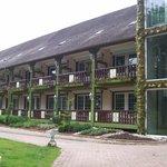 terrasses avec jardin des plantes aromatiques
