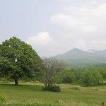 芝生の向こうの八甲田山