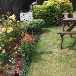 Garden in the front
