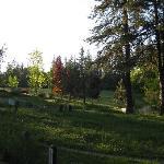 The Expanding Light Retreat의 사진