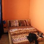 Photo of Hostel Giraffe