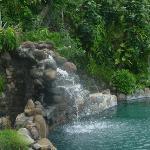 the fabulous pool