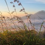 from the top of mt batur