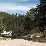 View from Campground Office looking up towards first cabins