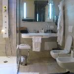 Bathroom of single room - completely enclosed in glass