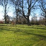 Gardens At Chatton Park