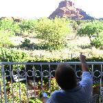 View from Manzanita room