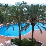Foto di Hotel Marina Delfin Verde
