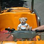 gulliver the easyjet bear enjoys the trip