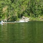 Williamsons Lake
